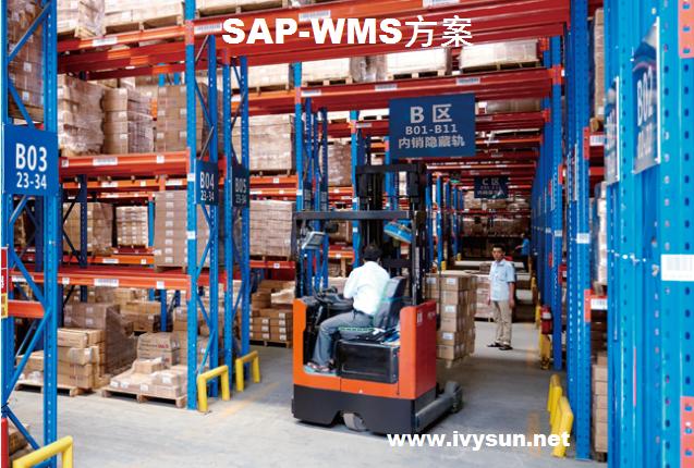 SAP-WMS仓库管理系统集成开发