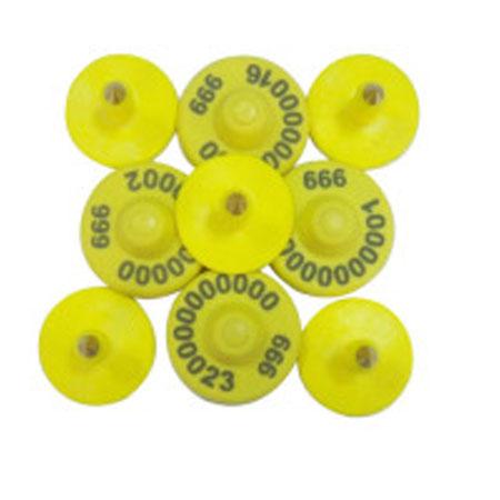 电子猪耳标IVY-E06